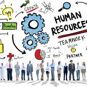 پرسشنامه استراتژی های سازمان